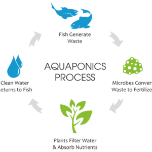 Fisheries and Aqua-Sciences